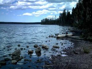 Lewis Lake at Yellowstone National Park