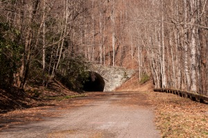 "Popularly called ""The Road to Nowhere,"" North Carolina Highway 228 construction was halted in the 1970s due to environmental concerns. Residents of the state fought with the Federal Government until 2010 to receive compensation for the unfinished road."