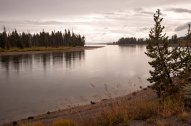 yellowstone river side