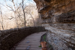 In a rare moment when Emme's little hound dog nose isn't pressed to the ground, she looks ahead under the rock ledge.