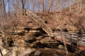 These are the steps getting to Little Clifty Falls. Don't worry - you only have to go down them.